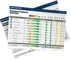 Emotional Footprint Report report
